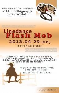 WB_LD_flashmob2013_poster